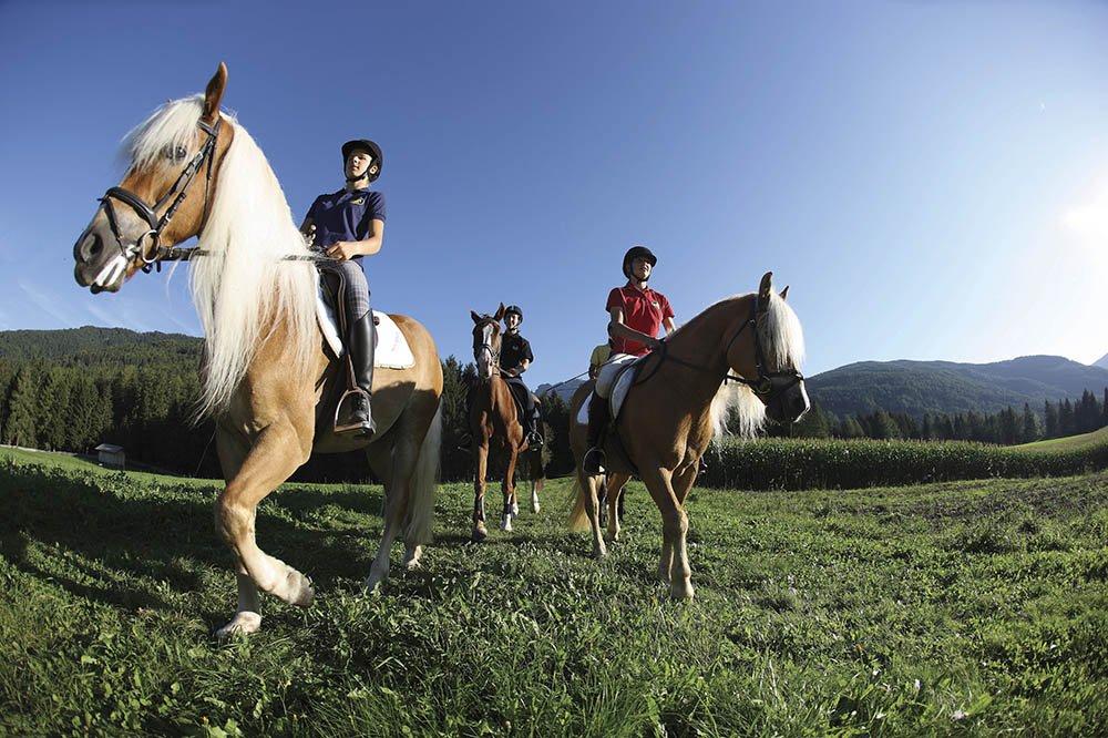 Trabend oder im Galopp – entdecken Sie Südtirol