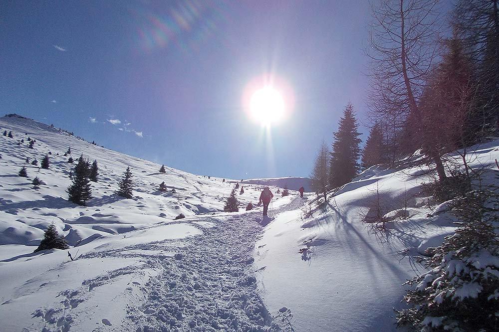 Tutti a sciare a Merano